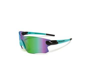 Bianchi Sparviero 2 bril